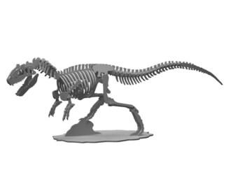 Allosaurus 3D Puzzle/Model