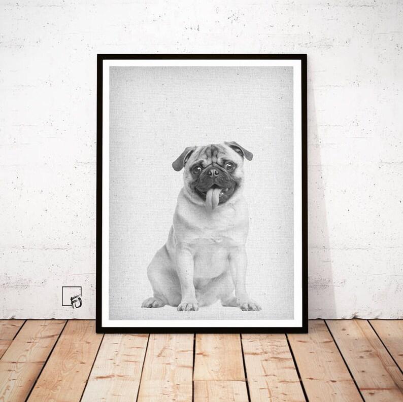 92c04282775 Baby Pugs Pug Wall Art Print Modern Minimalist Black and | Etsy