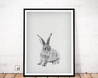 RABBIT Print, Rabbit Nursery Wall Art, Hare Rabbit Printable, Hare Woodland Animal Art Print, Nursery Decor Animal Prints, Printable animal