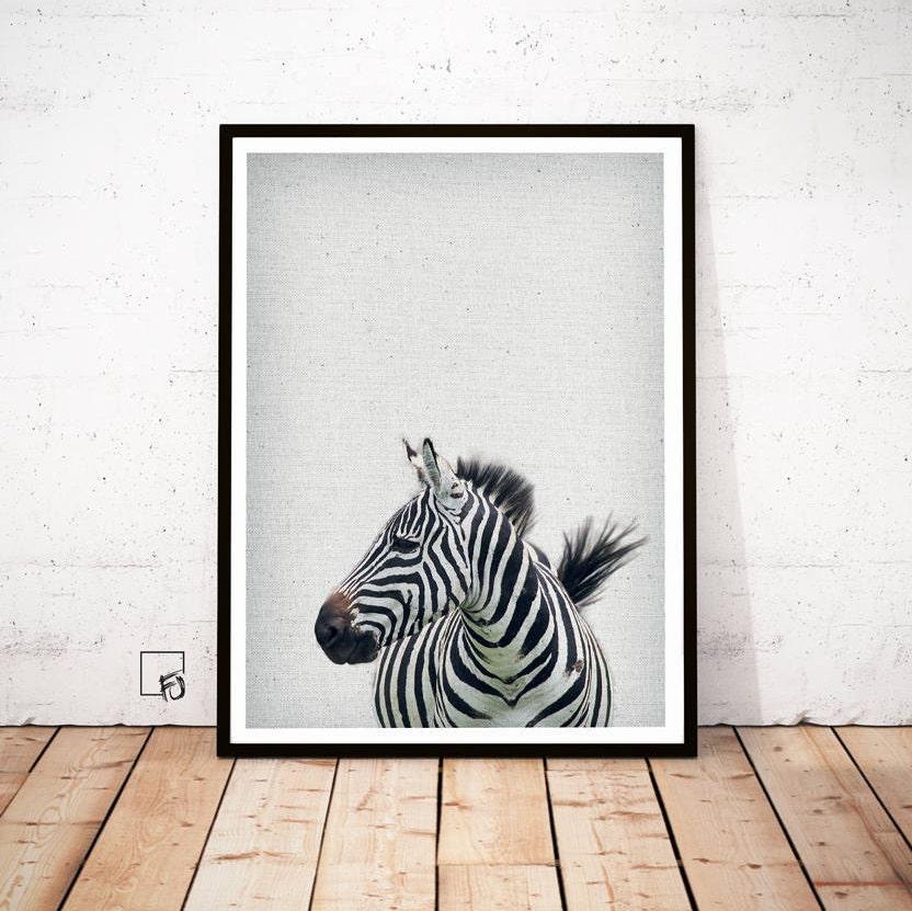 Zebra-Print Zebra Poster Zebra-Kopf Zebra Gesicht