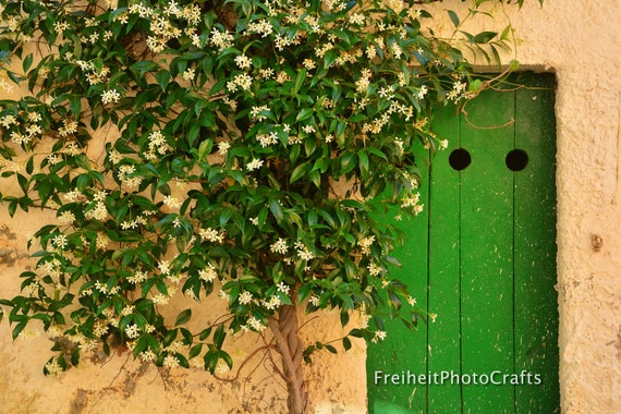 Travel,Italy-Door to serenity photographic prints.