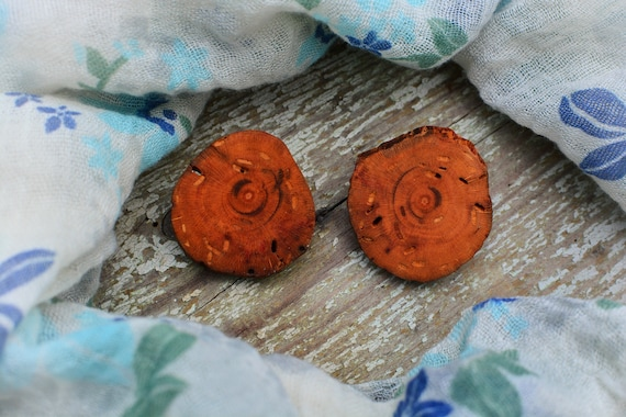 "Boho ""Foresta""  wood earrings"