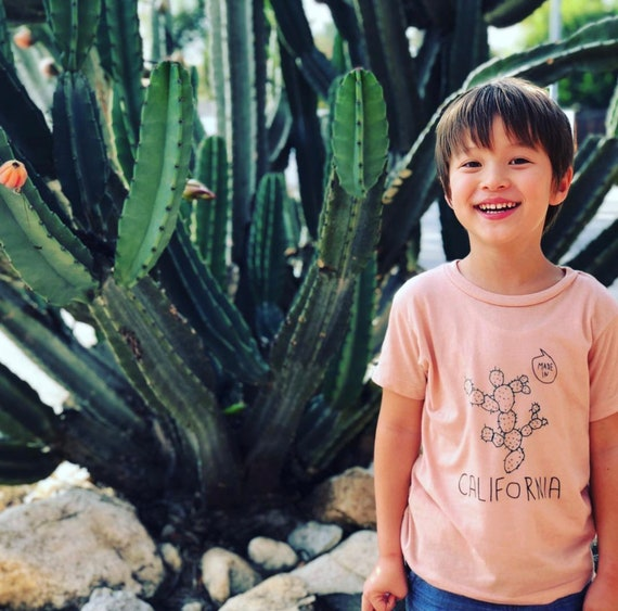 MADE IN CALIFORNIA Toddler Tee - Gray or Pink