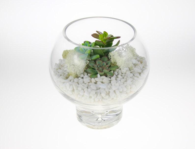 Mini Glass Sphere Diy Terrarium Kit Heavy Glass Terrarium Etsy
