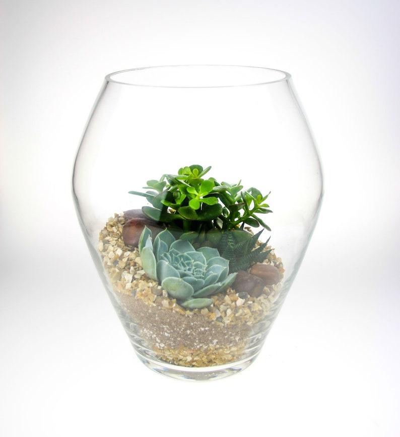 Tall Glass Terrarium Kit Beautiful Tall Handmade Glass Etsy
