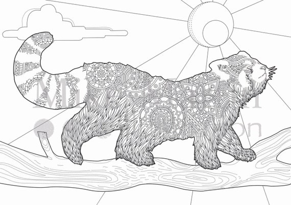 Printable Red Panda Coloring Page Instant Download Adult Coloring Page