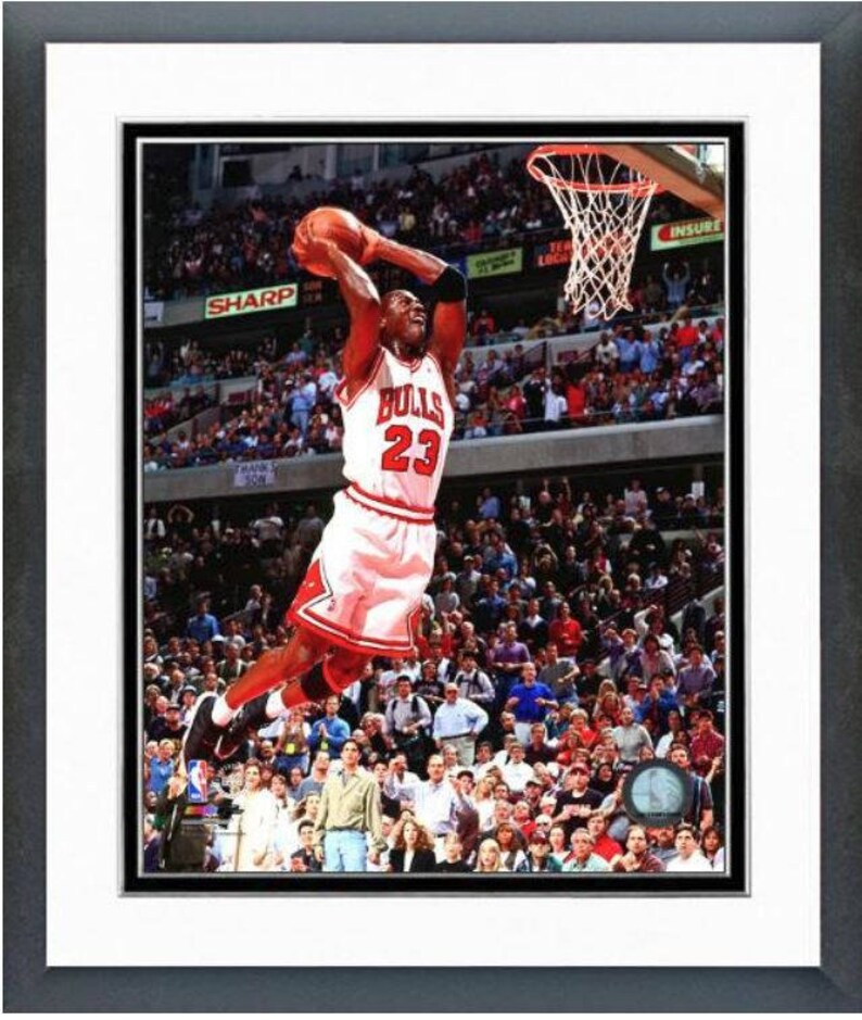 e0d1dcb2147cb Michael Jordan 1994-95 Chicago Bulls Action 8x10 Photo Double Matted and  Framed (Size: 12.5
