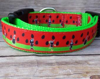 Watermelon Collar / Ant Dog Collar / Food Dog Collar / Dog Collar / Fun Dog Collar / Watermelon Leash / Summer Dog Collar / Summer Leash