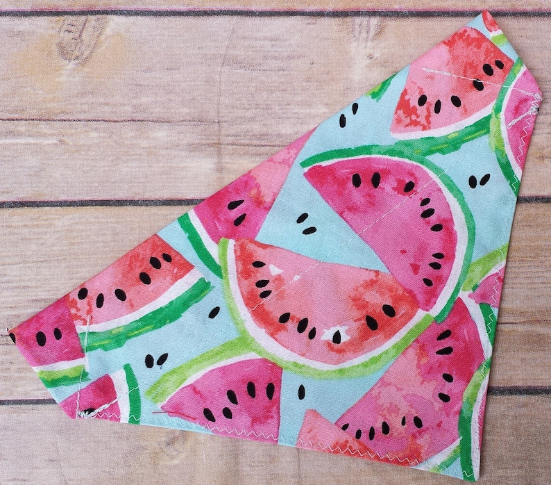Summer Dog Bandana / Summer Cat Bandana / Watermelon Dog image 0