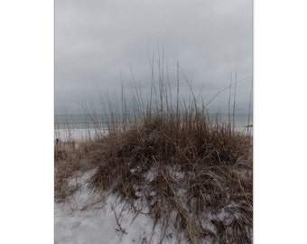 Winter Dunes Note Card