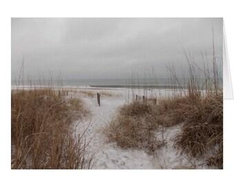 Winter Dunes III