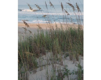 Sea Oats Note Card