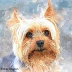 Custom PET Portrait, Watercolor DOG Portrait, Watercolor CAT Portrait, Pet Memorial, Custom Dog Portrait, Pets, Dog Art, Fathers Day Gift