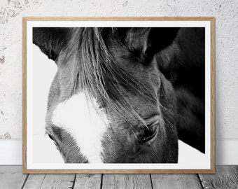 Printable Photograph, Horse Photography, Digital Download, Black&White, Western Art, Equestrian