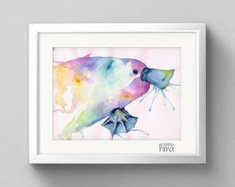 A4 Platypus Watercolour Print