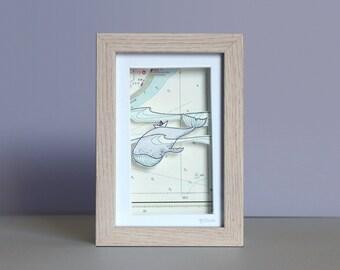 Whale - Maritime 3D Box - Shadow Box - Original Drawing - 11.5 x 16.5 cm