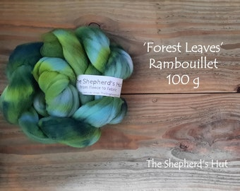 Rambouillet hand dyed braid 'Forest Leaves' 100 g  3.5 oz