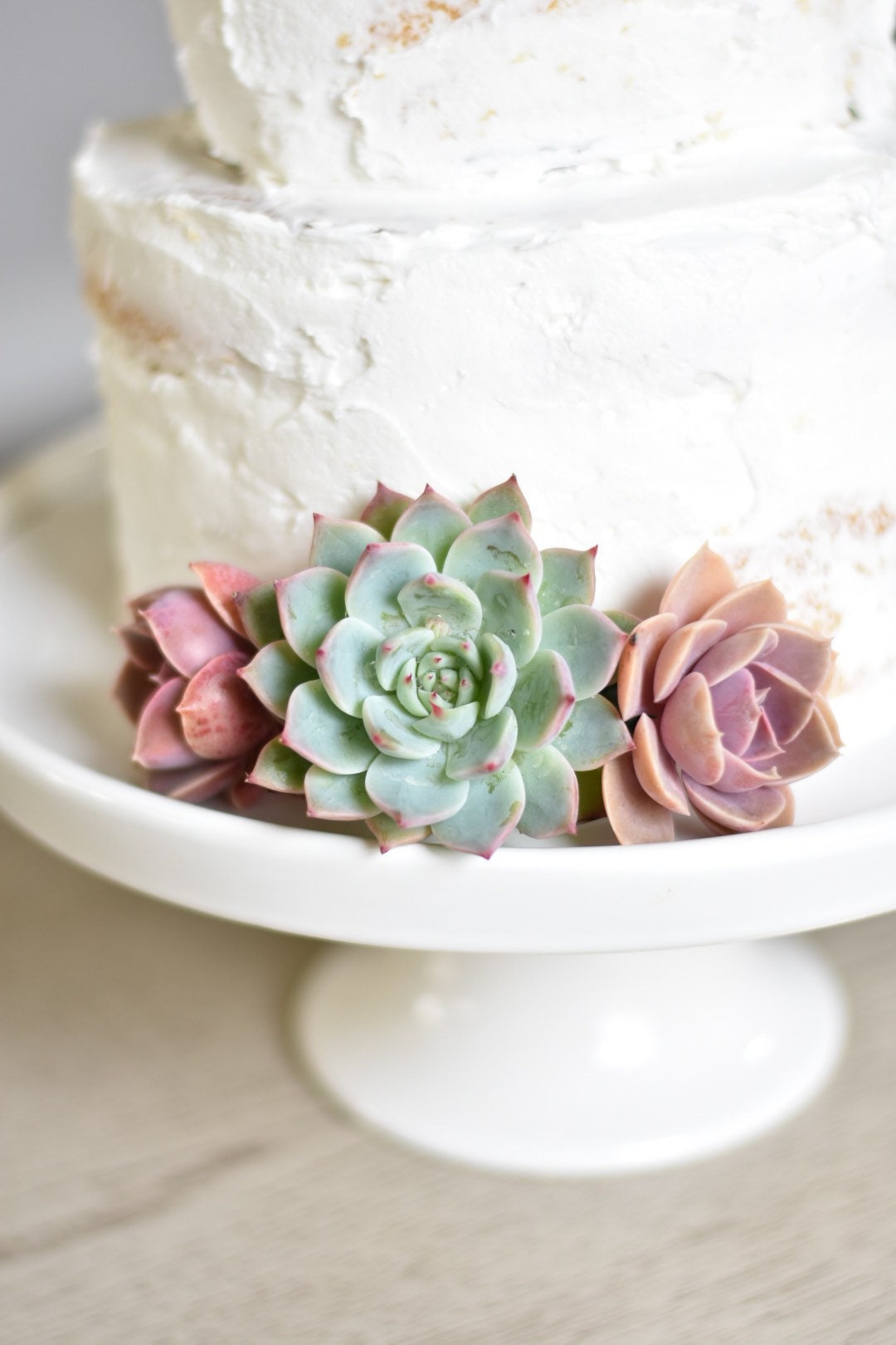 Succulent Cake Topper Off 73 Buy