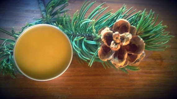 Cut n Shoot Pinon Pine Salve