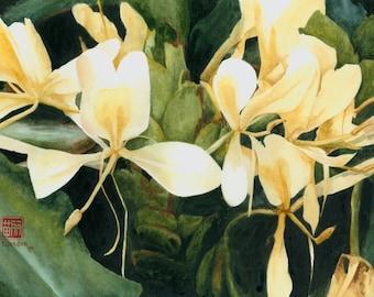 Tropical Flower Art Print - white ginger flower painting, Hawaii watercolor art, Hawaiian flowers, Mother's Day flowers, yellow flower art