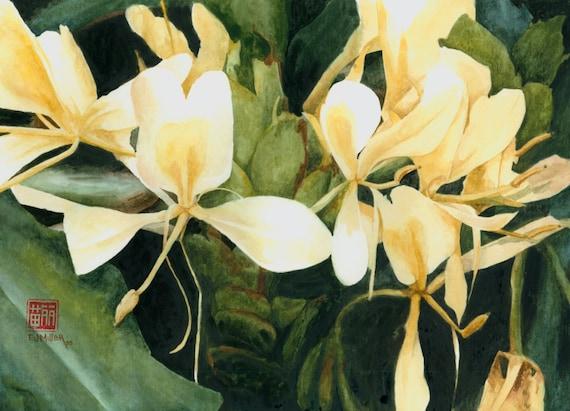 Tropical flower art print white ginger flower painting etsy image 0 mightylinksfo