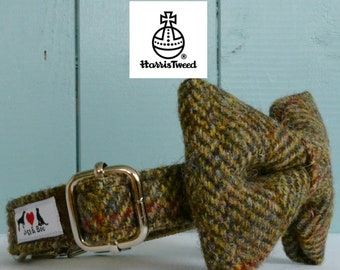 Genuine Harris Tweed Dog Collar 'The Bertie' with choice of buckle