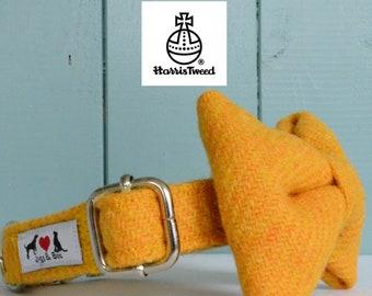Genuine Harris Tweed Dog Collar 'The Brodie' with choice of buckle