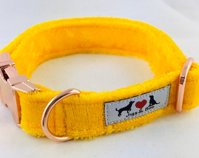Featured listing image: Luxury Sunshine Yellow Velvet Dog Collar with choice of buckle type