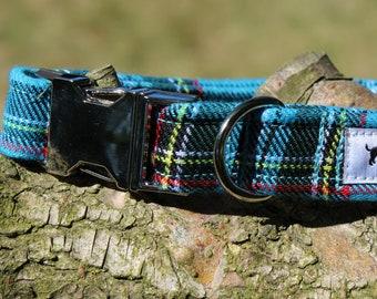 Stylish Sapphire Tartan Dog Collar with choice of buckle