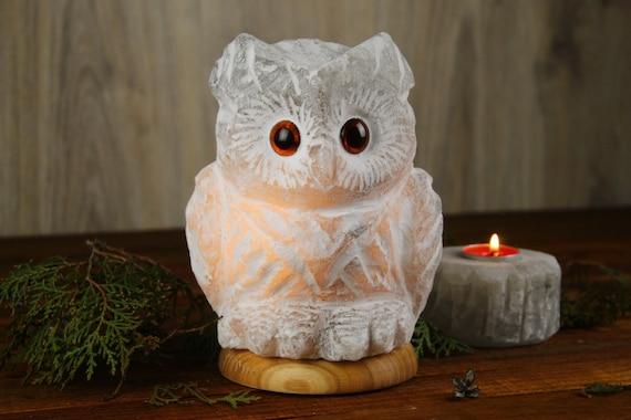 Salt lamp large night light Owl gifts Custom interior ligting with wood base Bedside lamp for owl lovers