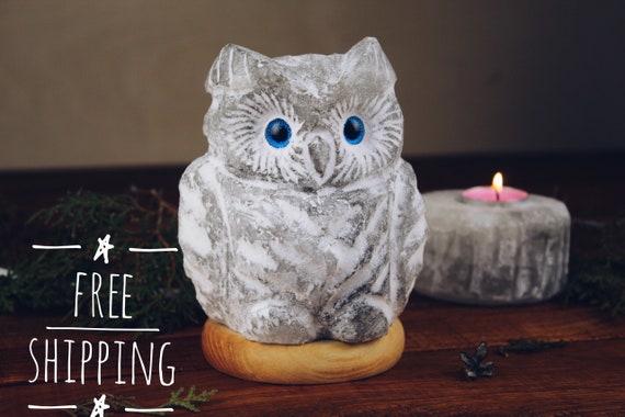 Owl table lamp for kids Salt desk lamp small night light Owl gifts Custom interior ligting Bedside wooden lamp for owl lovers