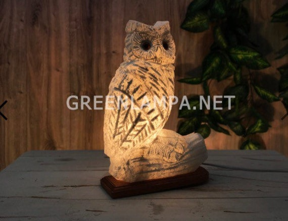 Bedside salt lamp gift for owl lovers Custom interior ligting with wood base large