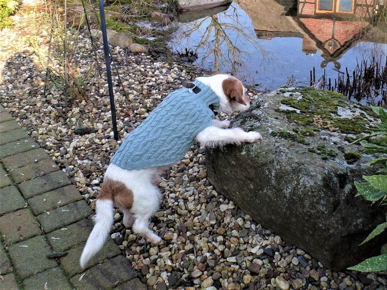 Dog sweater Hedwig 100% virgin wool made of image 0