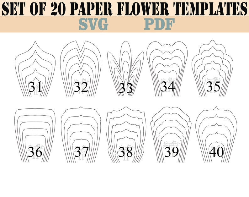 Bundle 2 All 20 Pdf Svg Paper Flower Template Giant Paper Flower Paper Flower Pattern Bundle Template Large Paper Flower Paper Flower Kit