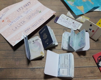 Travel set : Passport with cover case and boarding pass