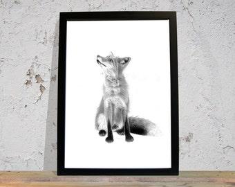 Red Fox, Fox Art Print, Fox Gifts, Fox Art, Black And White, Fox Decor, Fox Christmas, Original Art, Signed Print, Christmas Gifts