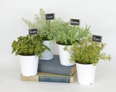 Faux Parsley, Sage, Rosemary, and Thyme in Enamel Pots and Garden Marker Signs