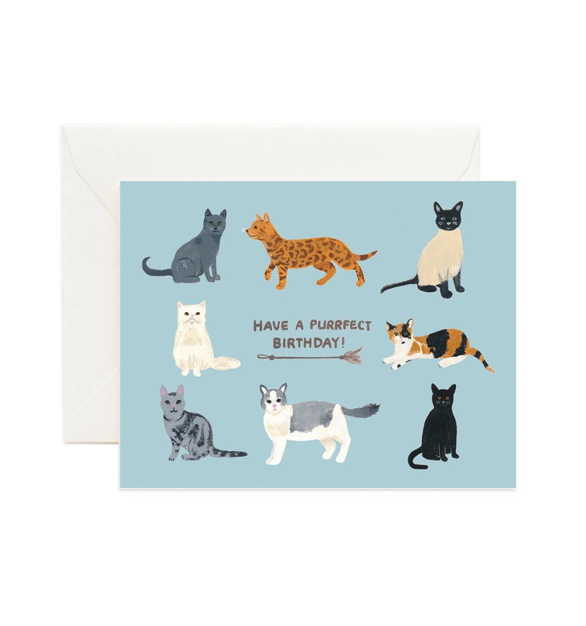Geburtstag Katzen Geburtstagskarte Katze Katze Katzchen Etsy