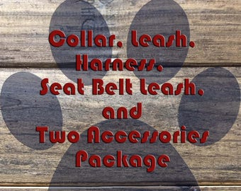 Collar, Leash, Harness, Seat Belt Leash, and Two Accessories Package