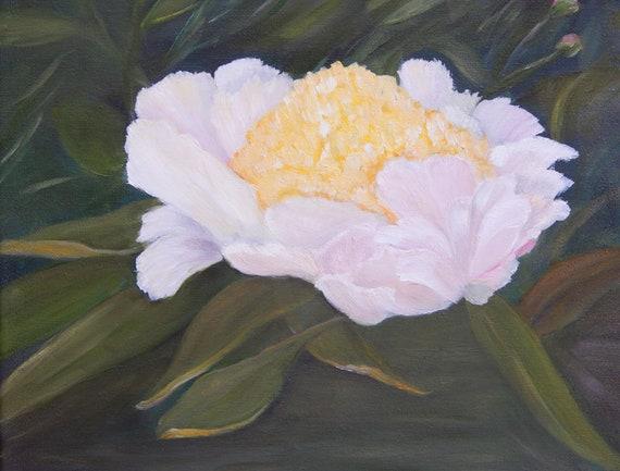 White Peony Peony Painting Original Oil Painting 12x12 Etsy