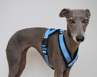 Harness Y Shape in 3 Colours Fleece Lined Adjustable strap Whippets, Italian Greyhounds, Lurchers, Greyhounds, Saluki, Sighthound