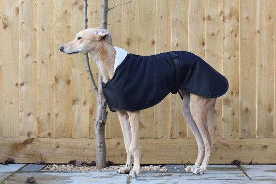 Greyhounds Lurchers Hi Vis Yellow Harness Y Shape in 3 Colours Fleece Lined Adjustable strap Whippets Italian Greyhounds Sighthound Saluki MEDIUM