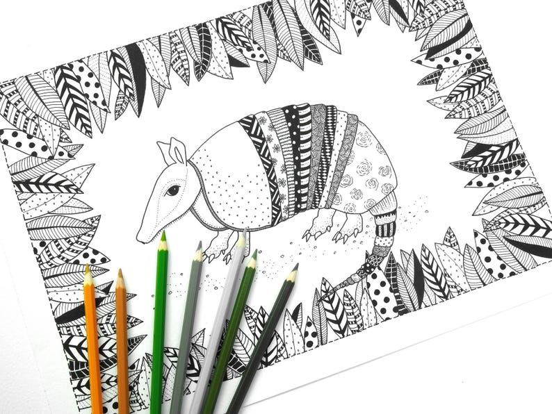 Armadillo Colouring Page Adult Colouring Page Adult Coloring Book Etsy