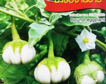 260 Heirloom Seeds -  Thai White 'Pumpkin' Eggplant Aubergine FREE SHIPPING