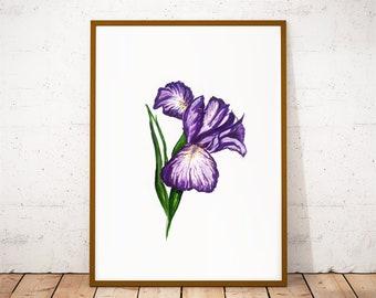 Iris flower art print kitchen illustration, purple bedroom wall art, botanical print art, Watercolor flowers print, floral wall decor