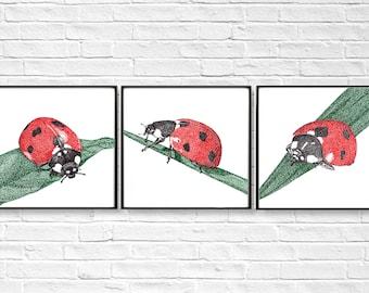 Printable Ladybird digital files nursery art set, lady beetle drawing, ladybugs instant download, nursery wall decor, insect illustration