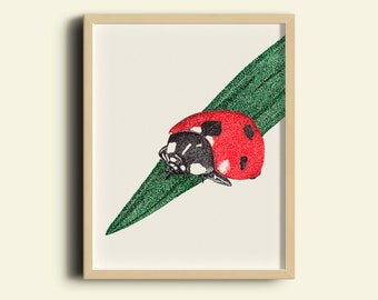 Ladybird print art, red baby girl nursery wall art, bugs prints, ladybird art set, nursery room decor, insect posters, lady bug art prints