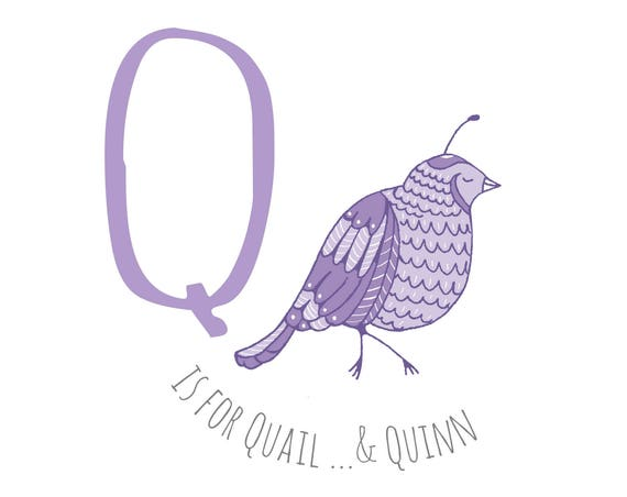 Q is for... Quail