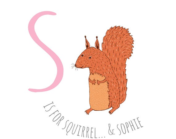 S is for squirrel...