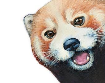 Red Panda Selfie
